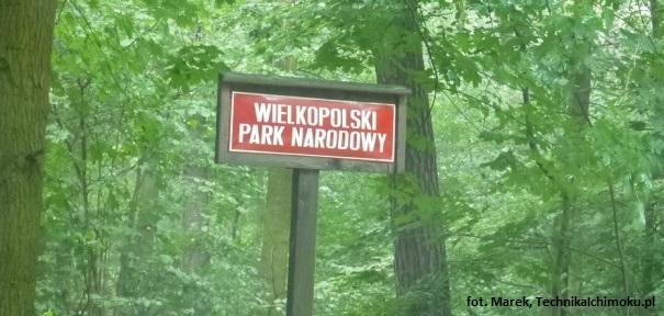 WPN_01